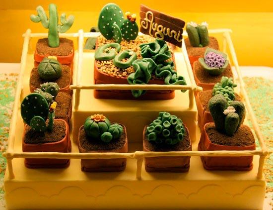 Piante for Giardini decorati