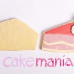 Biscotti decorati con ghiaccia reale e dettagli in pasta di zucchero © Red Carpet Cake Design. Photo: Federico Casella per Cakemania®