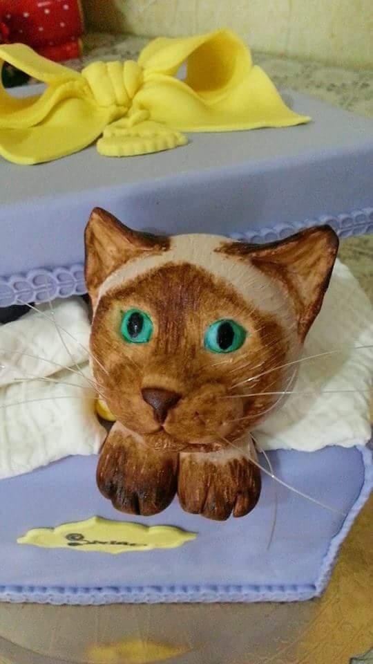 torta a forma di gatto