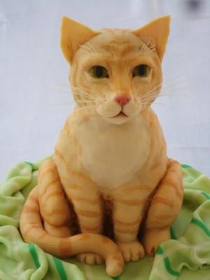 torta gatto cat cake