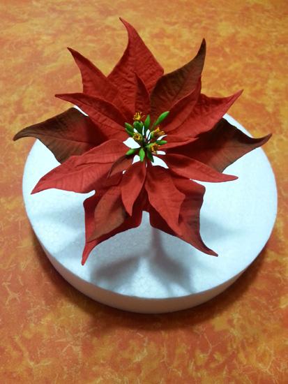 Stella Di Natale In Pasta Di Mais.Tutorial Di Cake Design Come Realizzare Una Stella Di Natale Cakemania Eco Food Blog Di Sasha Carnevali