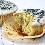 Cupcake al limone e semi di papavero. Photo © Chiara Andreoli per Cakemania®