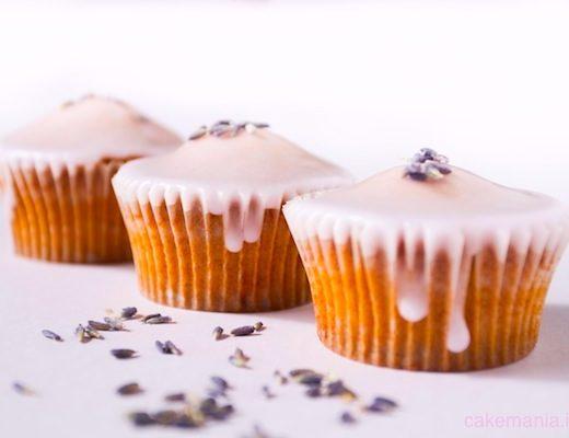lavender cupcake lavanda