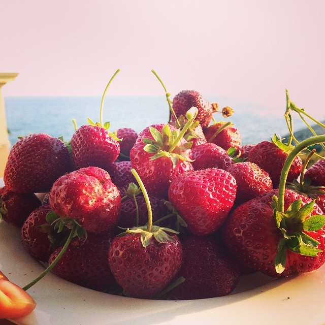 #fragole appena raccolte in #terrazza sul #mare! #ortiurbani #strawberries #cakemania #yeswecake #foodporn #instafood