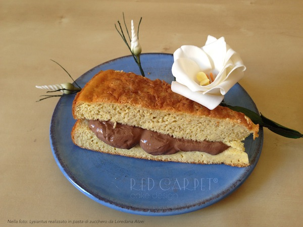 Torta con crema al cioccolato secondo la dieta Dukan © Red Carpet Cake Design®