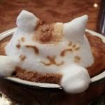 Gatto in 3D © Kazuki Yamamoto