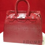 BIRKIN BAG CAKE-FRONT copia