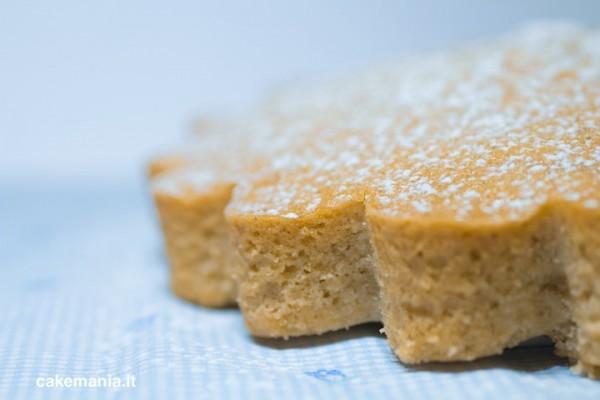 Ricette di torte senza lievito e farina