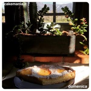 #buongiorno! La #crostata di #ricotta ha fatto presto a sparire…