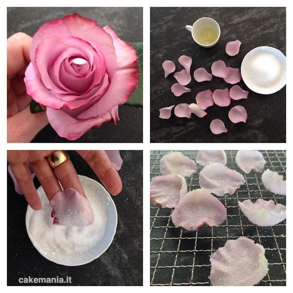 petali di rosa cristallizzati