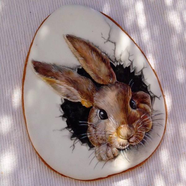 coniglio biscotto rabbit cookie