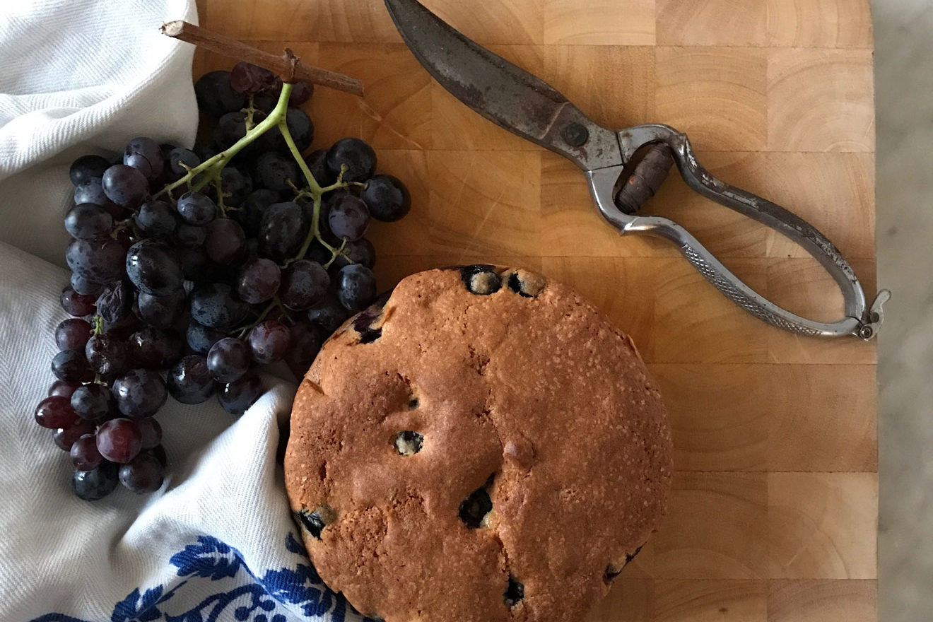 ricetta torta bertolina