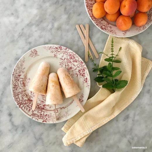 frozen yogurt stecco albicocca