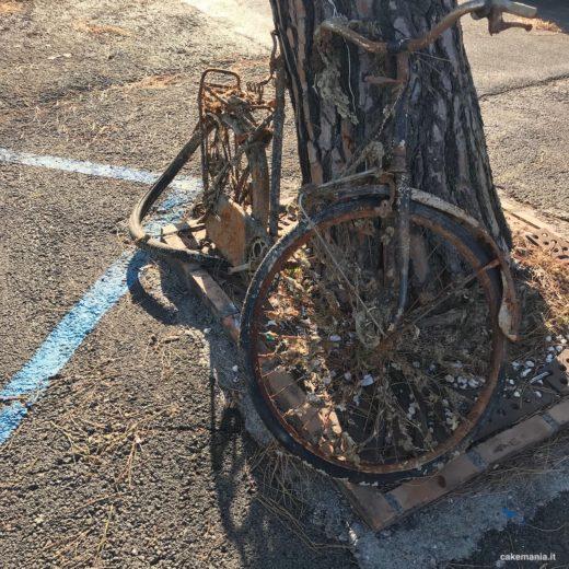 bicicletta abbandonata