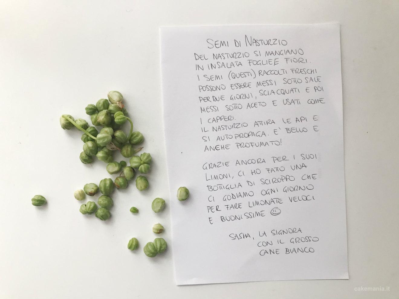 semi di tropeolo