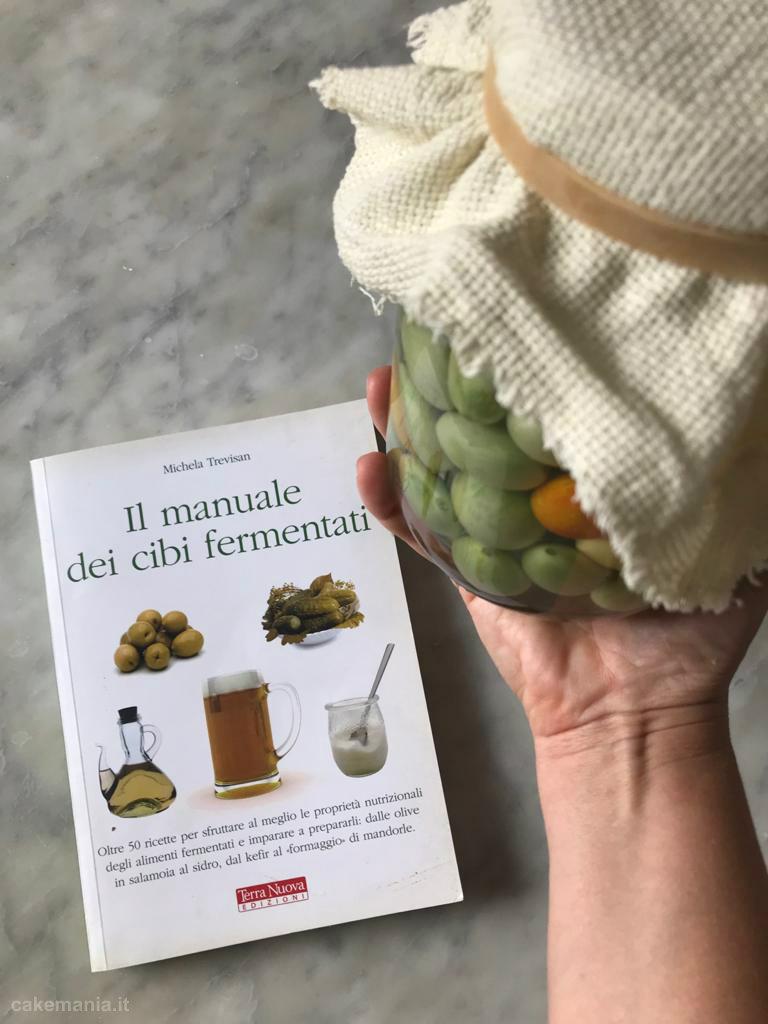 il manuale dei cibi fermentati terra nuova edizioni